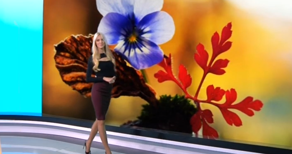 Хубавата Натали украси ефира и зарадва всички българи с прекрасна прогноза за времето