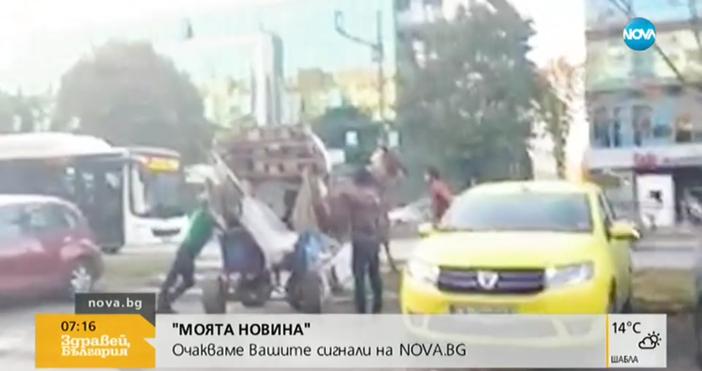 Черни прасета се разхождат по улиците на Пловдив, показва фейсбук