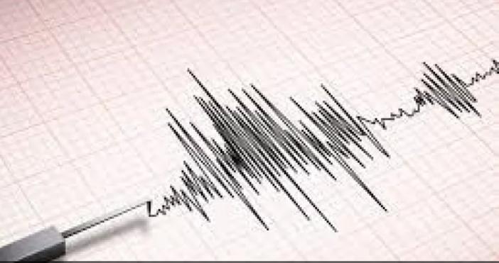 Земетресение с магнитут 2.6 е регистрирано в района на Доспат.
