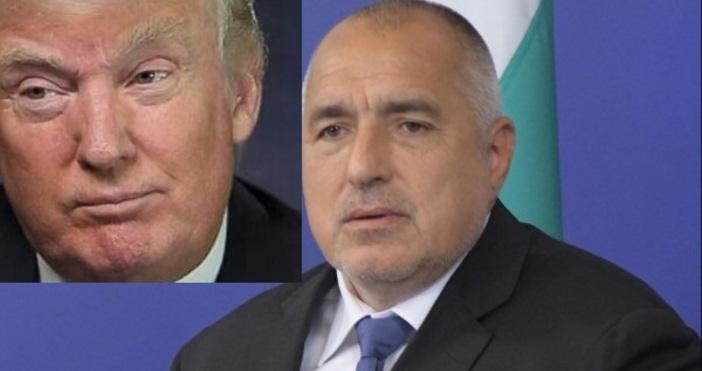 Премиерът Бойко Борисов ще подари на президента Доналд Тръмпподарък уникат,