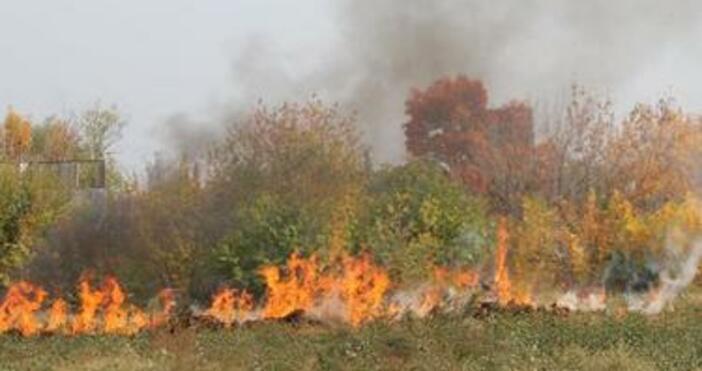 Пожар затвори временно пътя за Гърция края Кресна.Огънят тръгна около