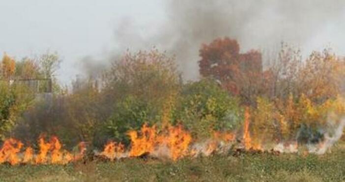 Снимка: Пожар в района на Дуранкулашкото езеро обхвана 60 декара растителност