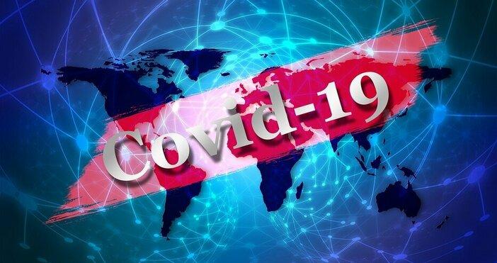 549 са потвърдените случаи на COVID-19 у нас по данни