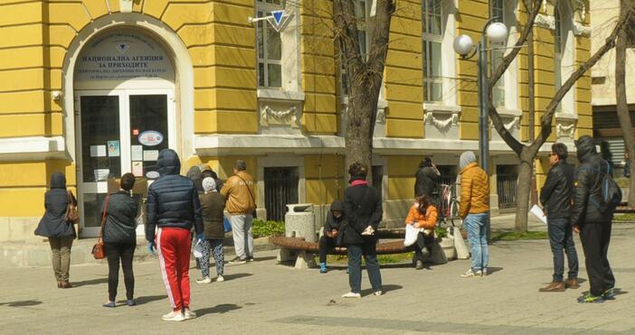 Източник и снимки: БулфотоВъпреки, че срокът за подаване на данъчни