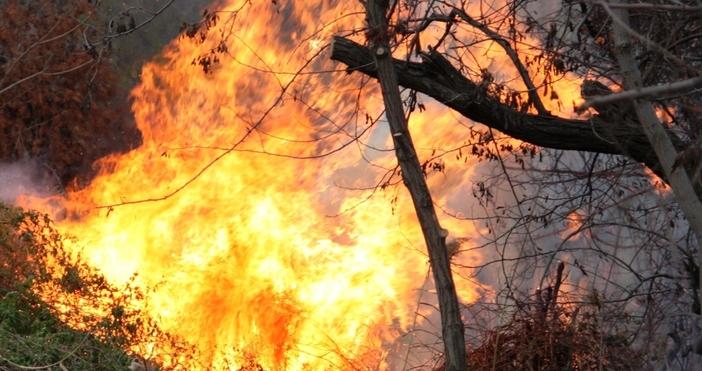 Във връзка пожароопасния сезон в периода от април до края
