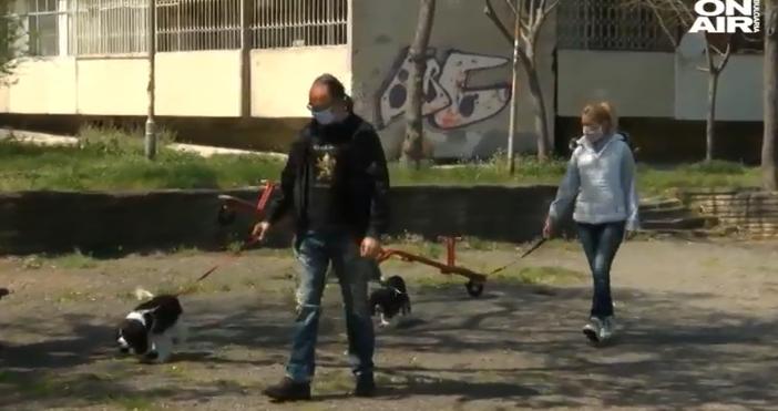 Източники видео:bgonair.bgСемейство от Бургас получиглоба за разхождане на кучета в