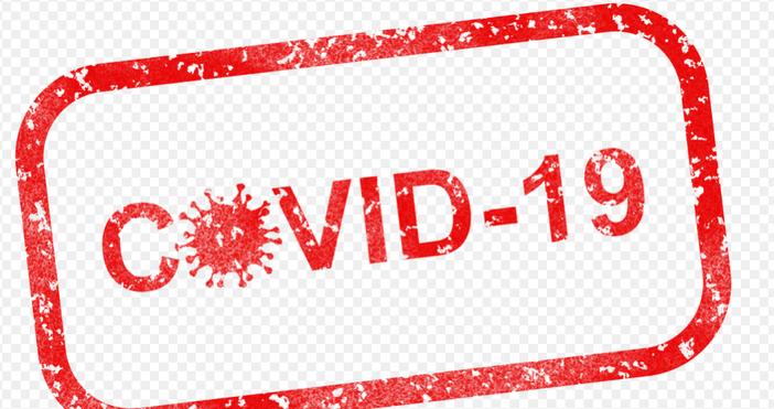 1097 са потвърдените случаи на COVID-19 у нас по данни