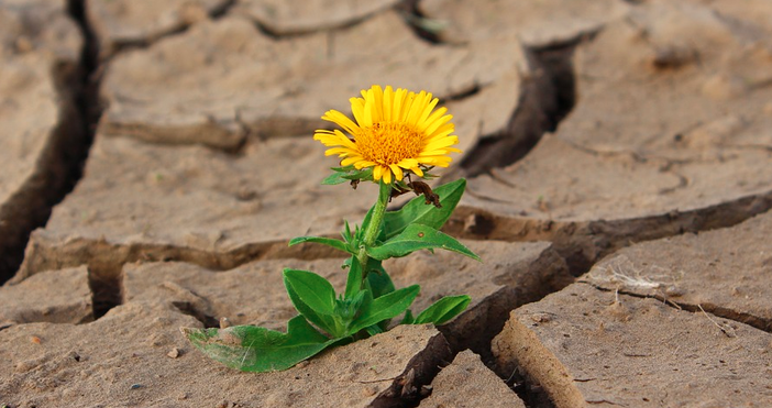 СнимкаpixabayУтреще преобладава слънчево време, с временни увеличения на облачността, по-значителни