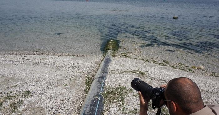 Снимка БулфотоАбсолютно недопустими са спекулациите за измирането на риба от