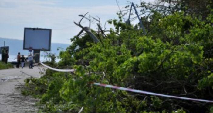 Снимка Булфото, архивСвличане на скални маси от ската над Алея