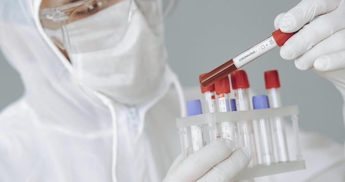 Снимка: Pexels140 са новодиагностицираните с коронавирусна инфекция лица през изминалите