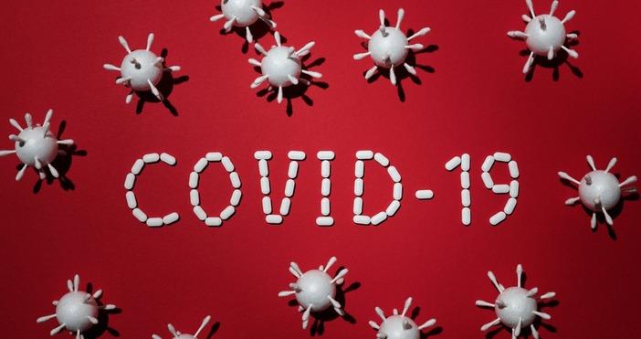 Снимка Pexels63 са новите случаи на COVID-19 при направени 923