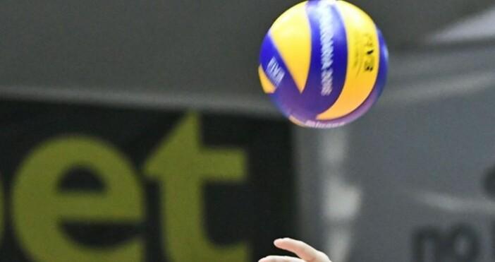 Снимка Булфото, архивРазпределителят от националния отбор по волейбол Георги Сеганов