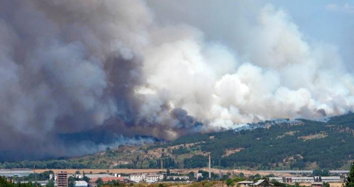 снимки БулфотоГолям пожар бушува в землищата на две села край