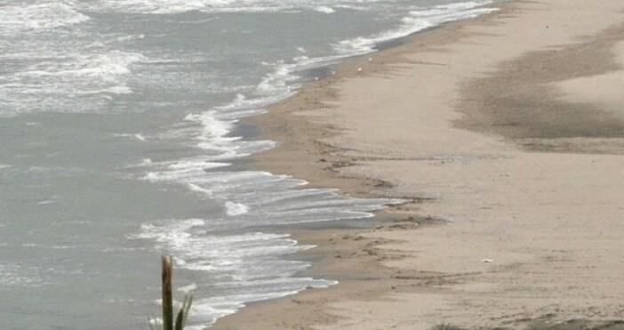 БНТснимка: БулфотоПалмово масло продължава да изплува на плажа в Бургас.