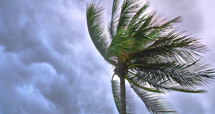 Най-малко трима души загинаха при пороен дъжд с гръмотевици, който