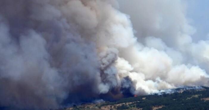 снимка: Булфото, архивОгънят, който два дни бушуваше край Лесово успя
