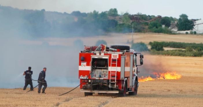 снимка БулфотоПожарът, който тръгна от Тополовградско и днес се прехвърли