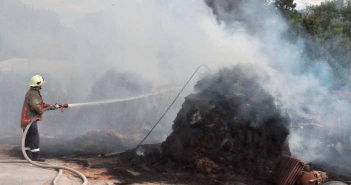 снимки БулфотоПожар избухна в кравеферма край Хасково, във вилна зона