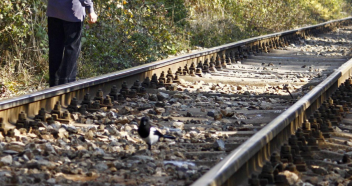 снимка БулфотоОрганизация на движението се създава за ремонт на жп