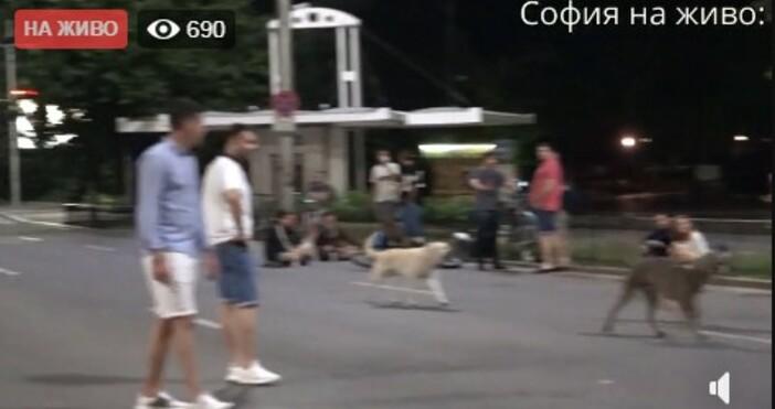 кадри и видео:, фейсбукПротестът в София продължава.Блокирано е Цариградско шосе,