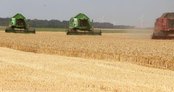 Снимка Булфото, архивБлизо 35 хиляди фермери са кандидатствали по извънредните