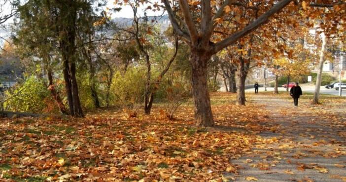 Снимка Булфото, архивВ 16.31 часа днес беше моментът на есенното