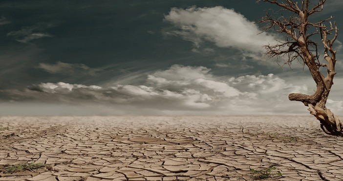 БНТpexels.comООН и Великобритания ще председателстват глобална среща за климата на