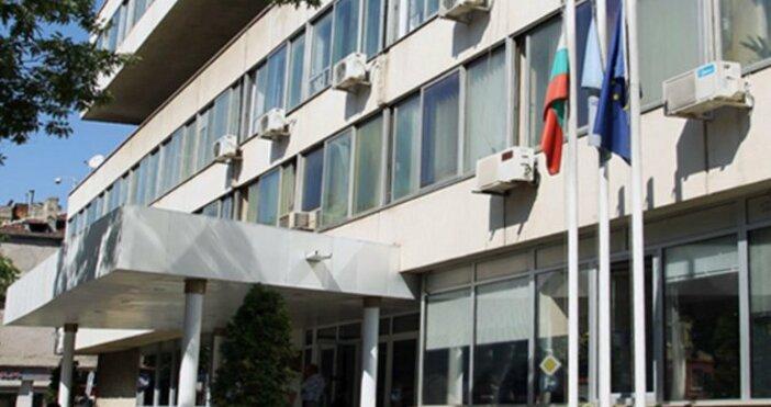 Снимка Булфото, архивДаниела Петкова от Българска асоциация на дружествата за