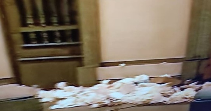 Кадър: Алфа ТВПротестиращи изсипаха боклуци пред сградата на Министерството на