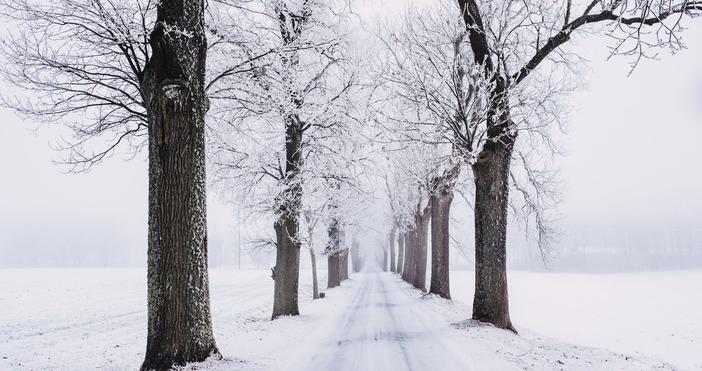 снимка:pexels.comДнес честваме настъпването на астрономическата зима. Ето как отбелязват този