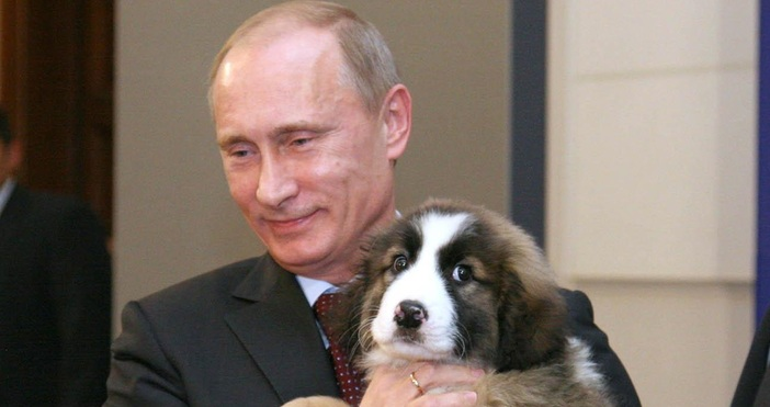 Снимка: Булфото, архивИмунизираха руския президент Владимир Путин. Това стана във