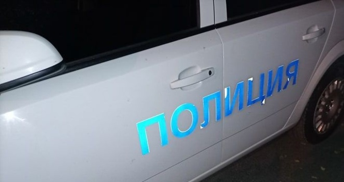 Снимка: ПетелОвчар е бил блъснат от автомобил на пътя