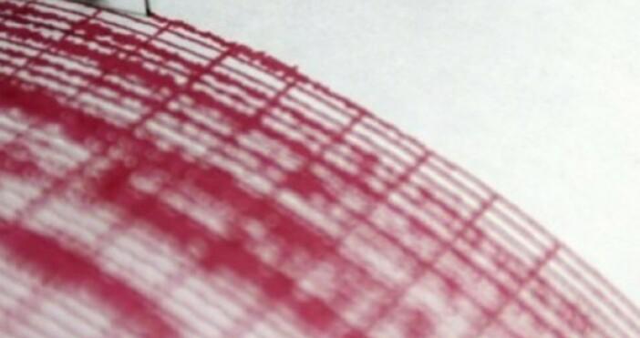 снимка БулфотоТрус с магнитут 6,2 по Рихтер разлюля Индия, предаде