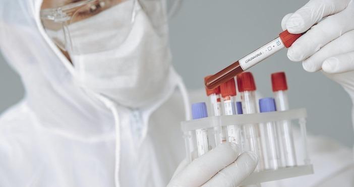 Скокът в числеността на инфекциите идва месец след като Португалия