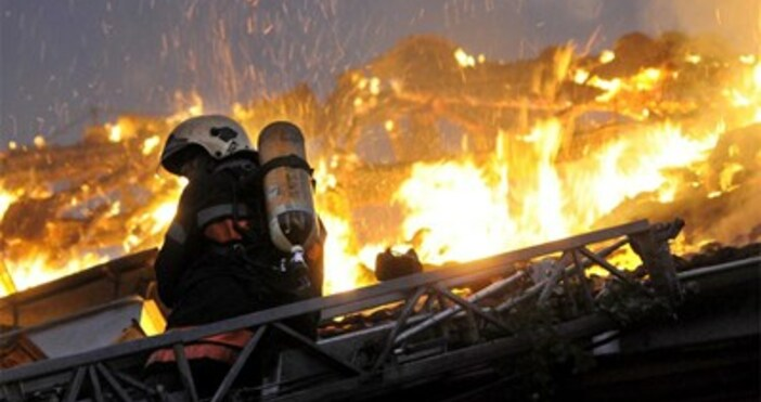 снимка: БулфотоСедем екипа огнеборци потушиха този следобед голям пожар в