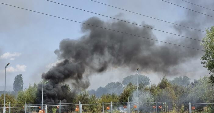 Снимки: БулфотоБуйнипламъци край София.Пожар гори до Околовръстното шосе между Драгалевци