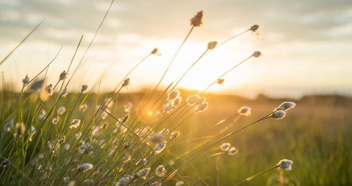 Снимка PixabayНад северозападната половина от страната ще бъде предимно слънчево,