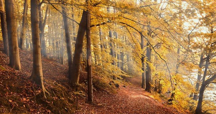 Снимка PixabayУмерени температури се очакват през октомври. Нормален в климатично
