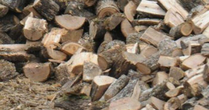 Снимка Булфото, архивВъзрастен русенец се оплака от скъпи дърва:Дървата за